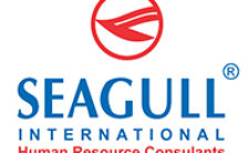 Seagull International Recruitment 2020 – Apply Online For Various Manager Posts